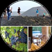 degustazione vini etnei